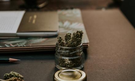 Marijuana Mania: How Cannabis Entrepreneurs are Impacting the Law
