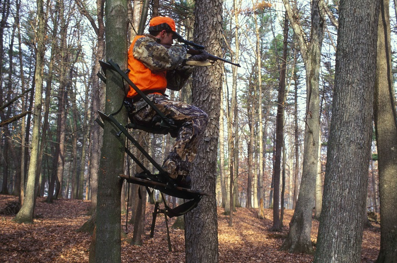 How To Get Started With Your Own Hunting Lease Business