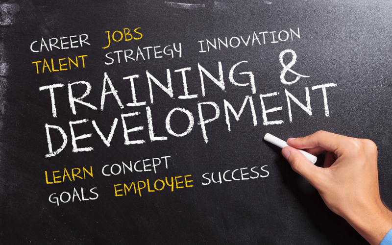 4 Professional Development Opportunities That Will Give You A Solid Return On Your Investment
