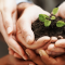 4 Ways to Improve Your Nonprofit Organization