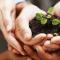 4 Ways to Improve Your Nonprofit Organization