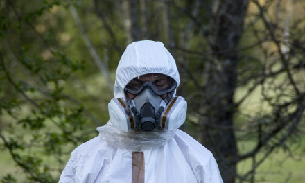 Protecting Your Respiratory Health: 5 Situations That Call for an Asbestos Inspection