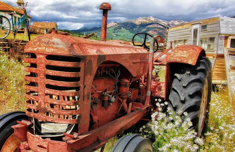 Profitable Farming: 5 Farm Ventures That Make Money